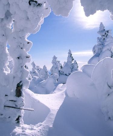 Wintery Photography