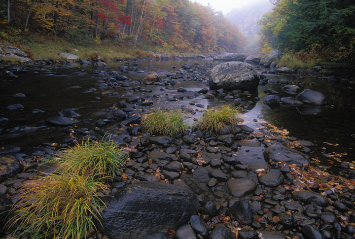 west river fall
