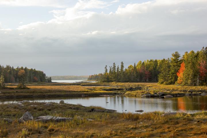 SFW_Acadia_Day1_LS-5
