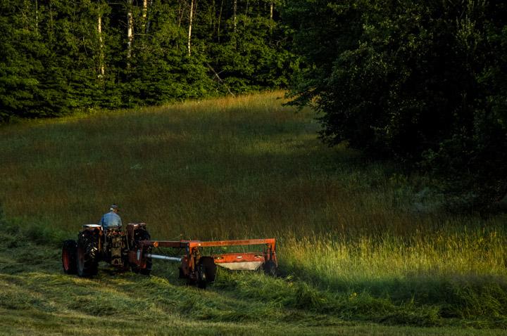 H mowing 3
