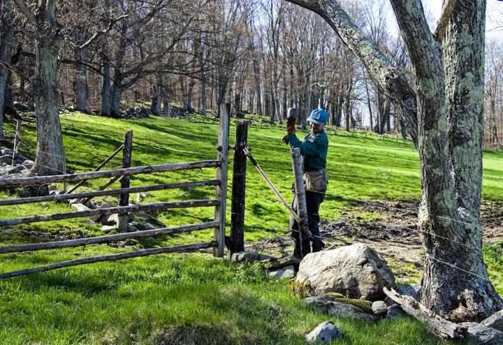 R fencing 2