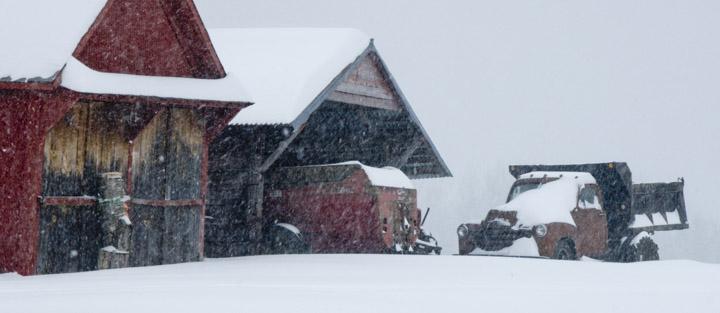 winter sheds