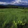 colvin-hill-view
