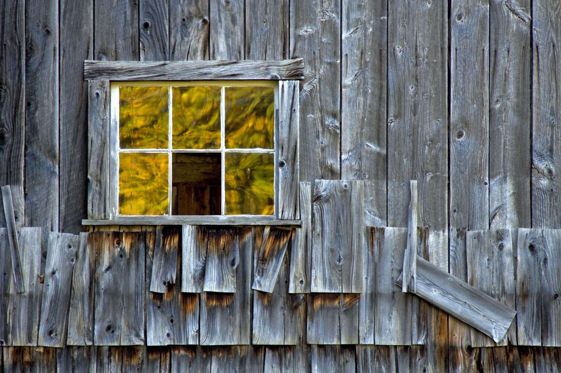 fall-reflection