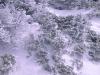 mt-abraham-winter