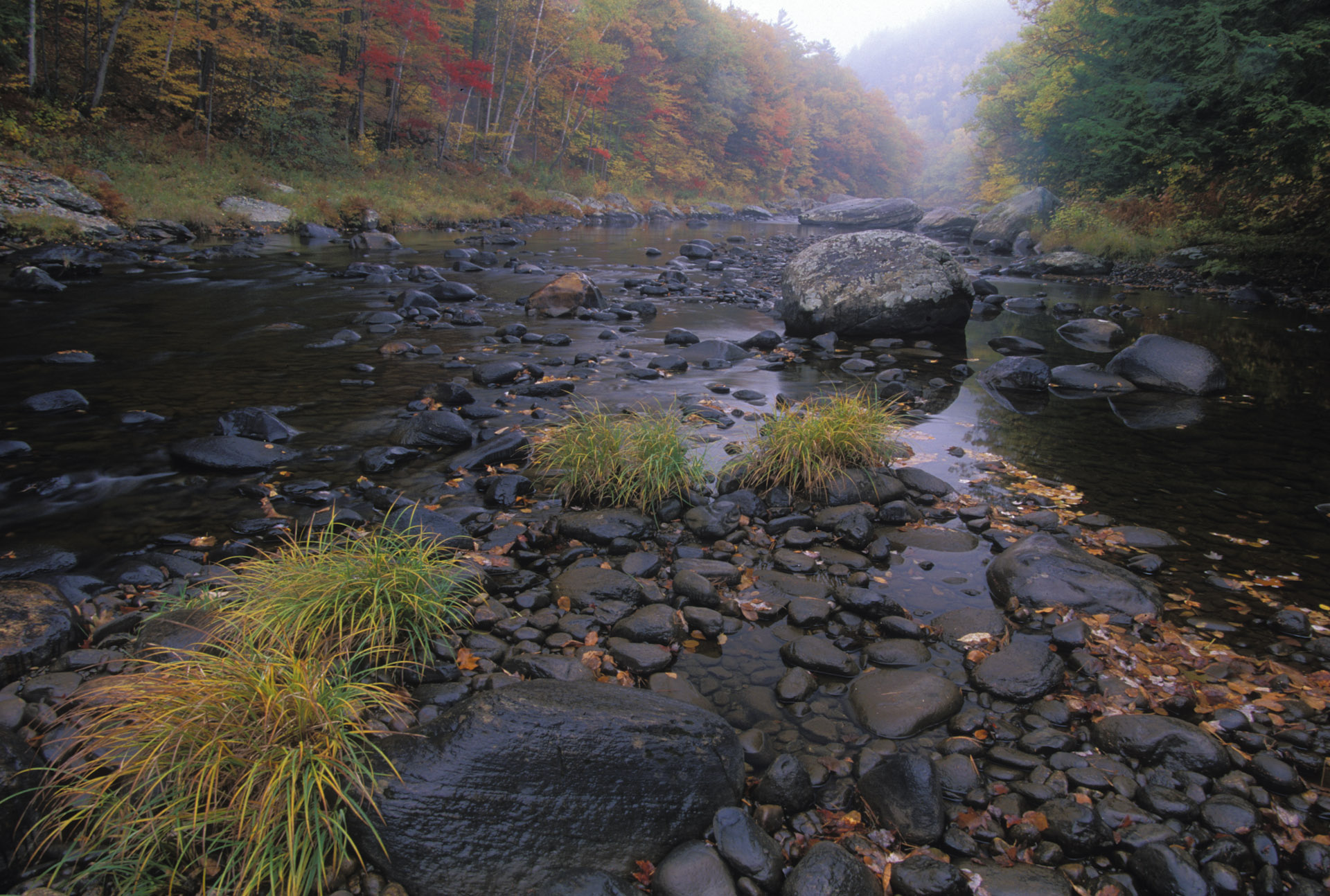 west-river-fall
