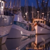 twilight-harbor-1