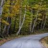 vermont-road-1-_