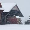 winter-sheds