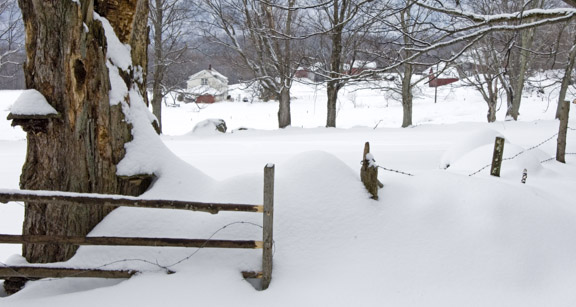 winter-gate-scene