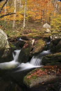 Black Brook, Vermont